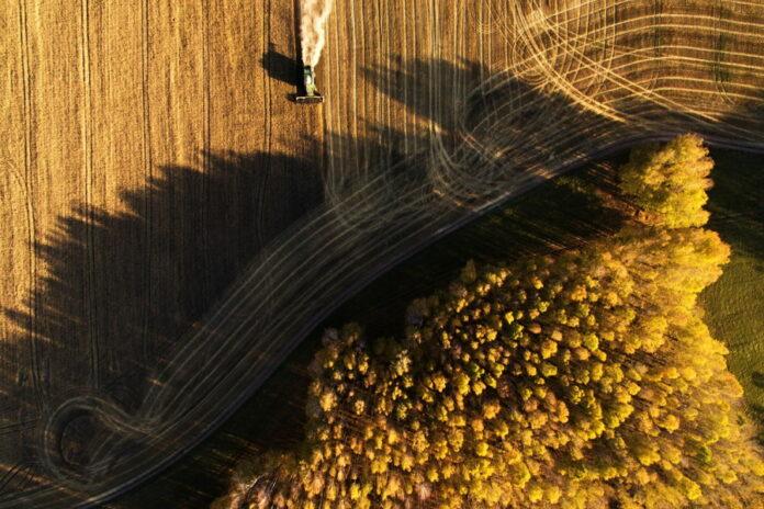 Узбекистан будет арендовать российские земли для выращивания сельхозпродукции