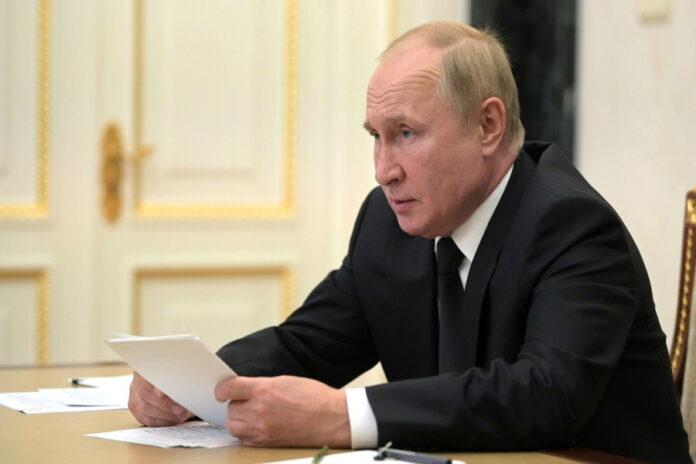 В этом году в России собрали хороший урожай — Путин